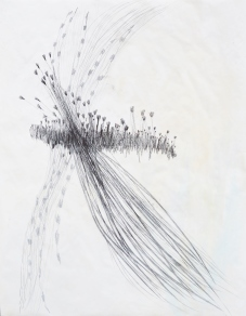Große zeichnung, Querbeet